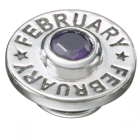 KJP421A - JewelPop February Birthpop