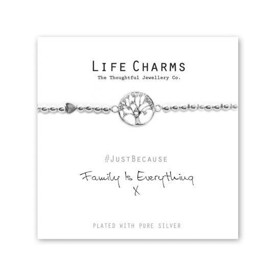 480237- Life Charms - LC037BW - Just because - Family is Everything